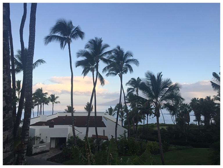 Jessi Dalton Photography - Maui - Hawaii_0004