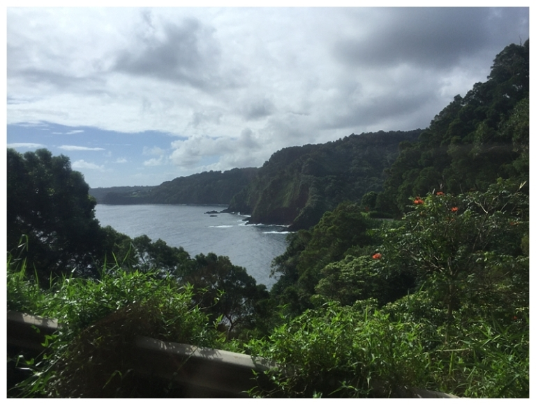 Jessi Dalton Photography - Maui - Hawaii_0005
