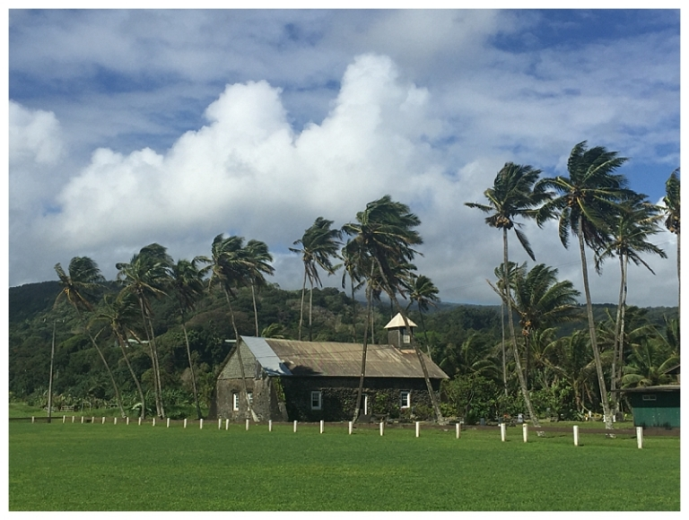 Jessi Dalton Photography - Maui - Hawaii_0006