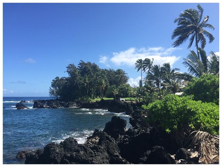 Jessi Dalton Photography - Maui - Hawaii_0008