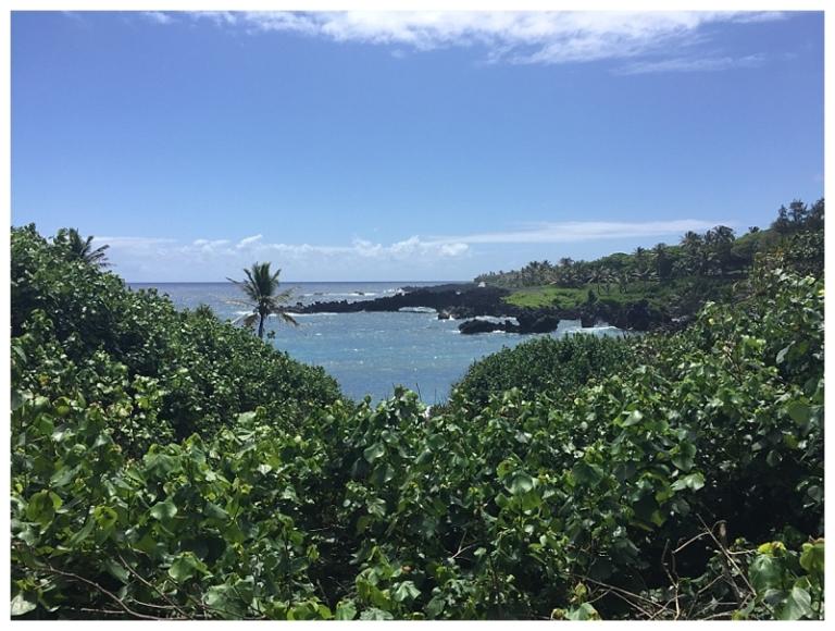 Jessi Dalton Photography - Maui - Hawaii_0011