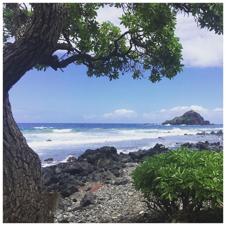 Jessi Dalton Photography - Maui - Hawaii_0013