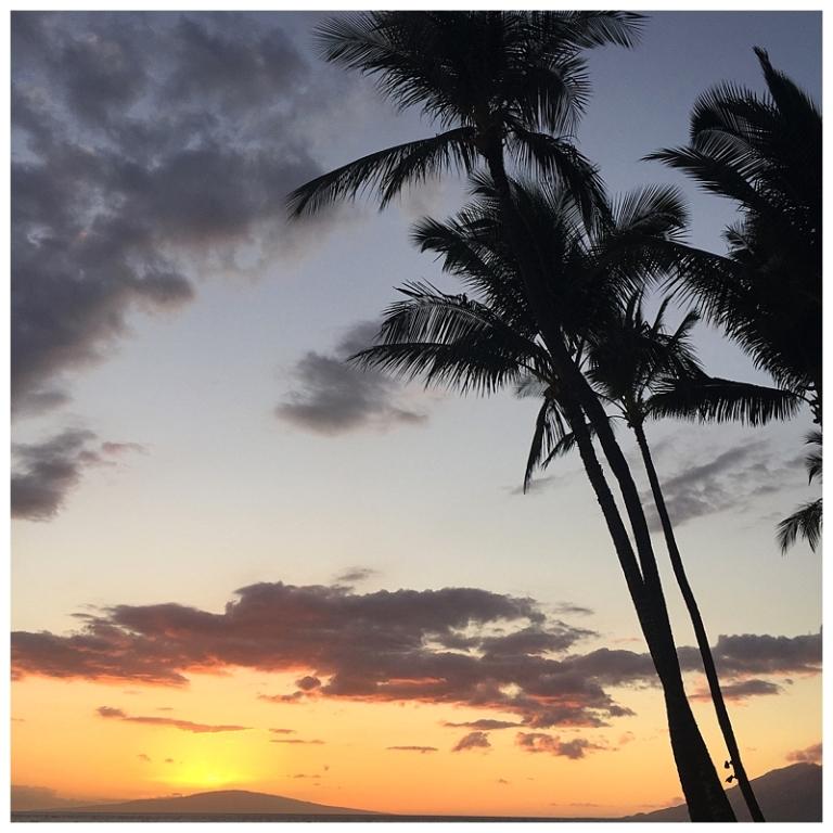 Jessi Dalton Photography - Maui - Hawaii_0015