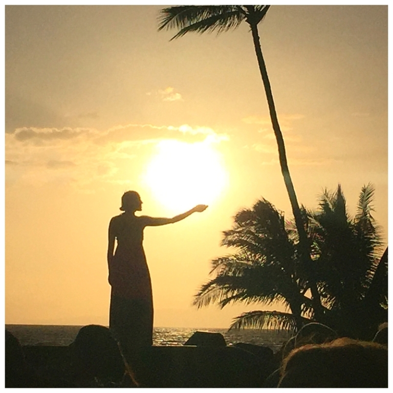 Jessi Dalton Photography - Maui - Hawaii_0018
