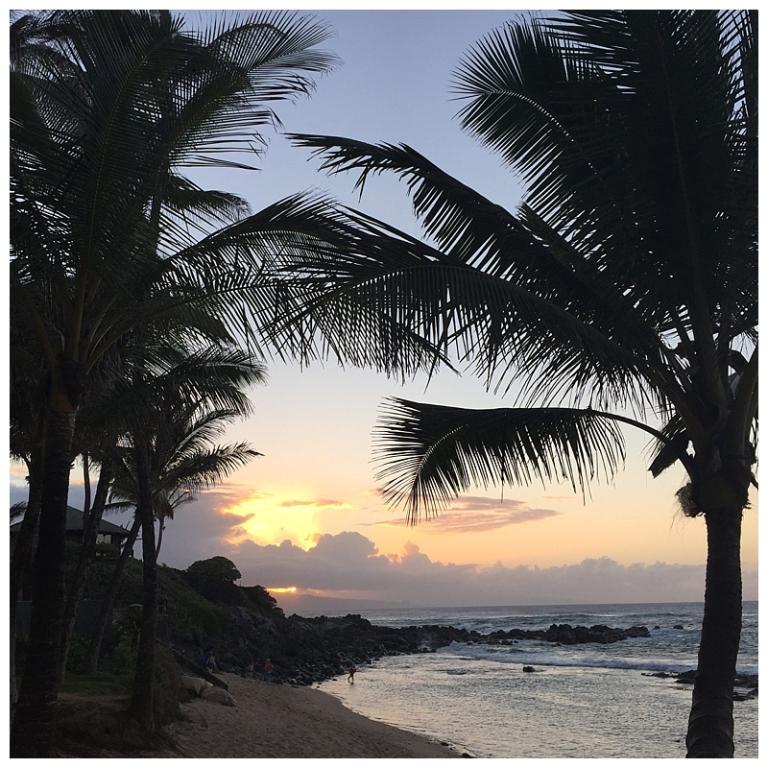 Jessi Dalton Photography - Maui - Hawaii_0023