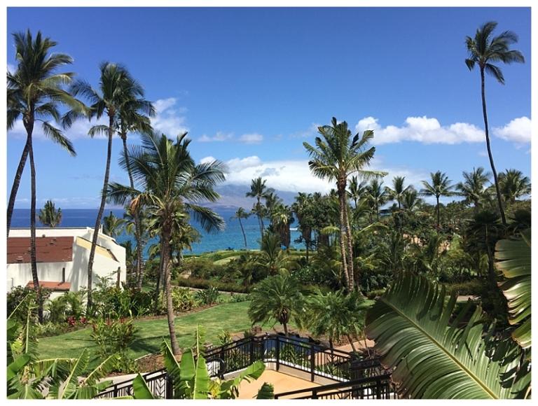 Jessi Dalton Photography - Maui - Hawaii_0024