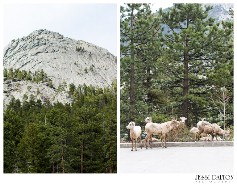 Jessi-Dalton-Photography-Della-Terra-Mountain-Chatuea-Lace-And-Lilies-Colorado-Mountain-Wedding_0002