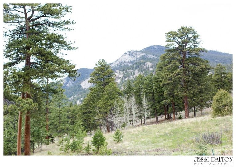 Jessi-Dalton-Photography-Della-Terra-Mountain-Chatuea-Lace-And-Lilies-Colorado-Mountain-Wedding_0011